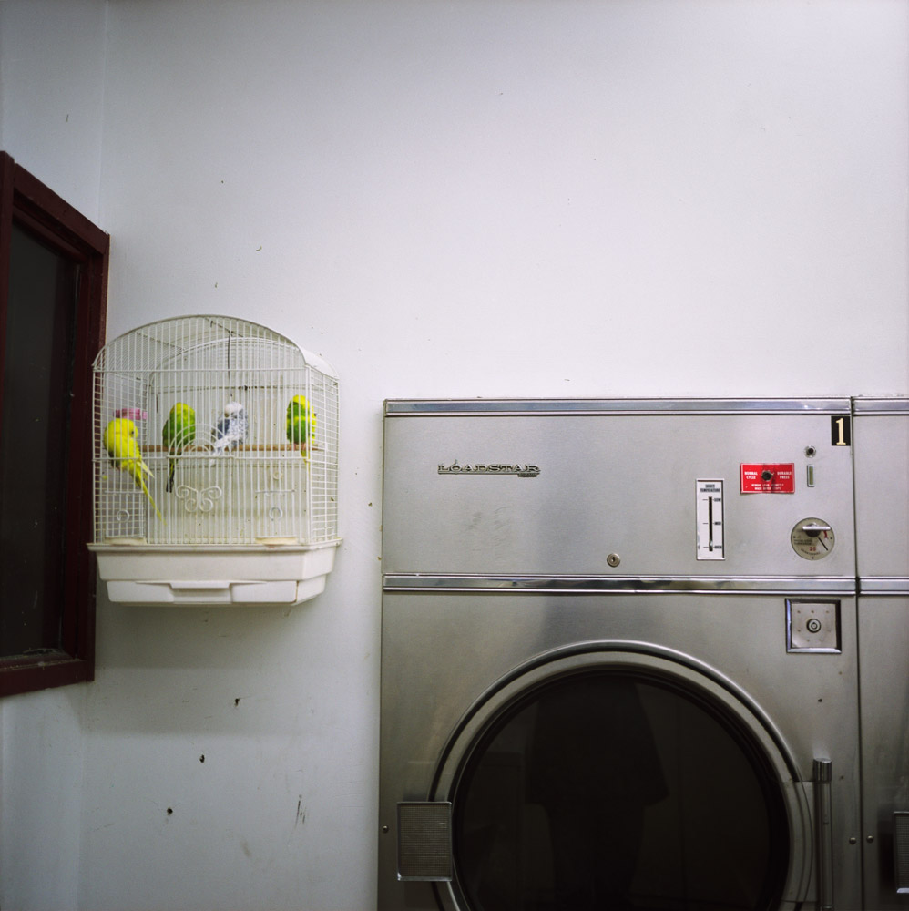 Laundromat, 1997