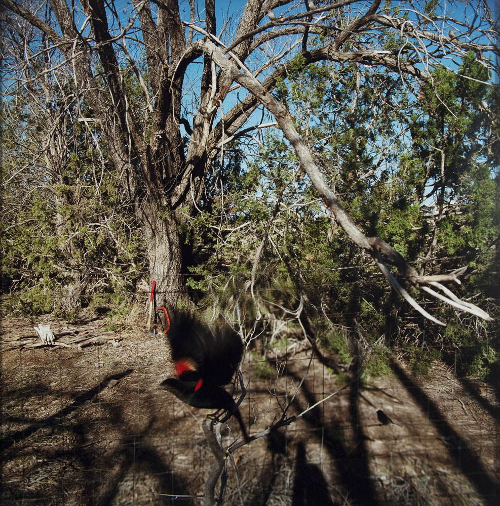 Nº 284, Février Mars 2004, 2004