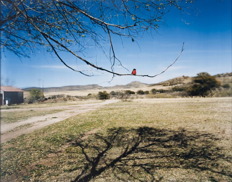 Nº 306, Mars Avril 2005, 2007