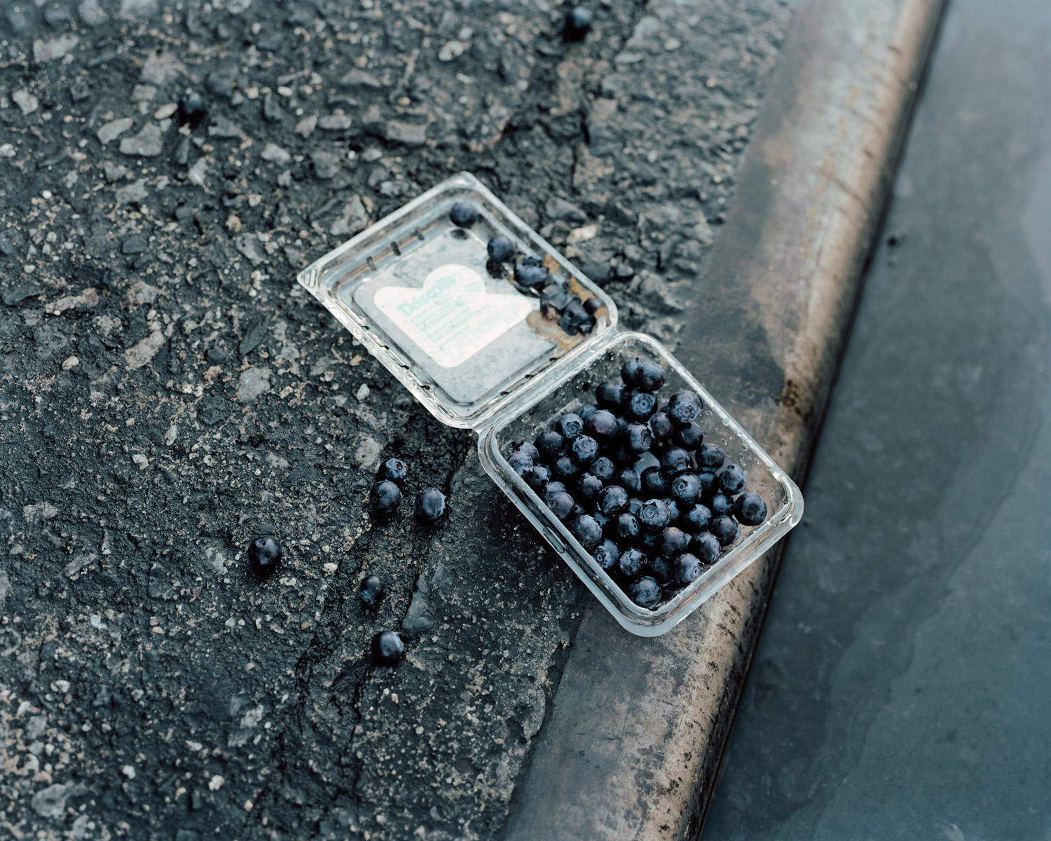 Blueberries In The Gutter At Dawn Moments Before Street Sweeping Looking East From Fulton Street & Nostrand Avenue, Brooklyn, 2010