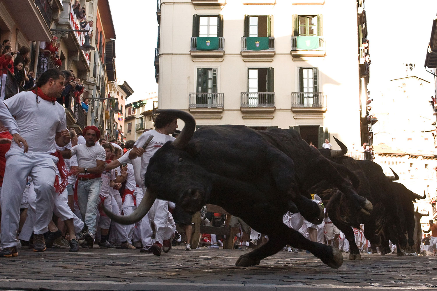 July 8, 2011. A fighting bull loses its balance during the third day of the San Fermin running-of-the-bulls in Pamplona, Spain.