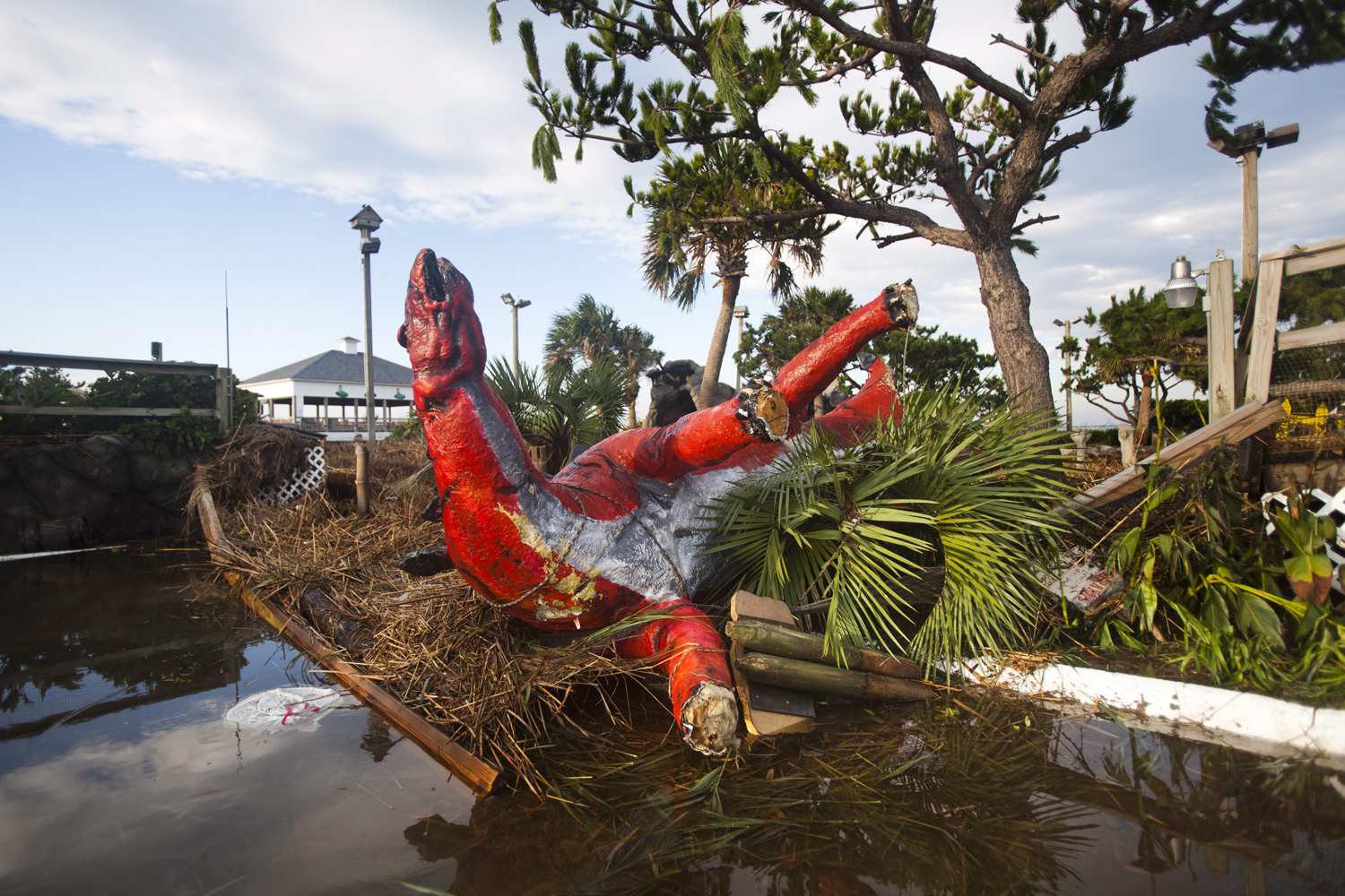 August 28, 2011, Nags Head, North Carolina. The morning after Hurricane Irene barreled through the Outer Banks, a statue of a dinosaur at Jurassic Putt Putt Golf remained toppled.
