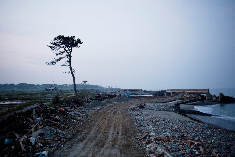 The devastated coastline of Minamisoma, August 12, 2011.