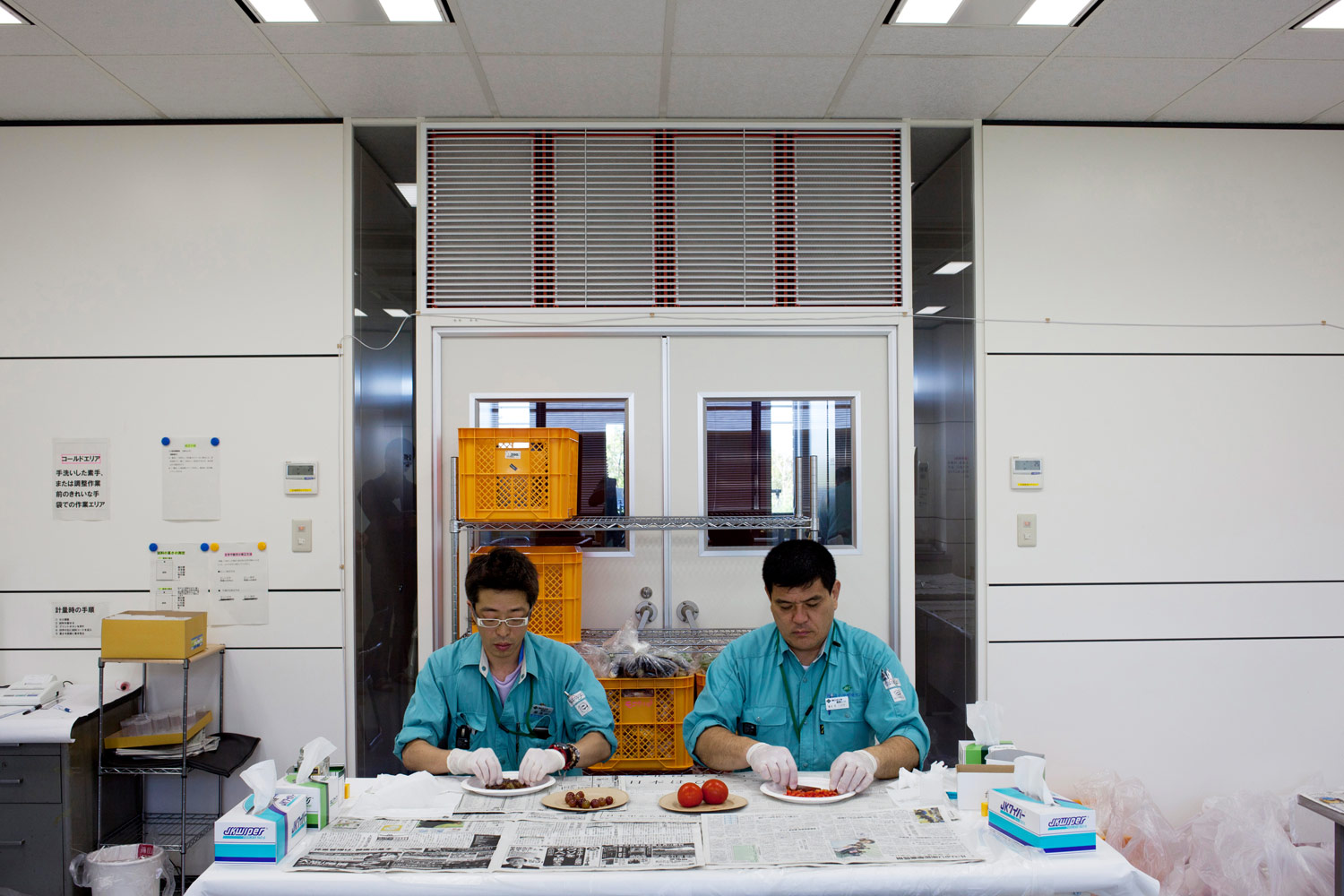 Fruit and vegetables are screened for radiation at a testing center in Koriyama city, August 11, 2011.