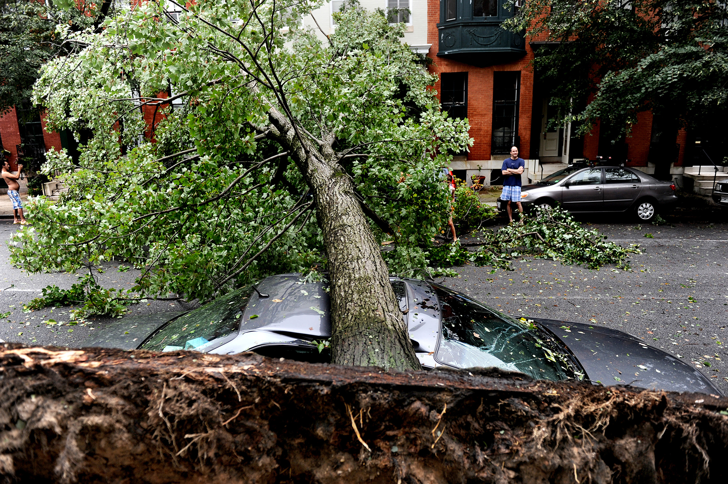August 28, Baltimore, MD. Neighbors inspect a scene where a large tree crushed a car in Baltimore.