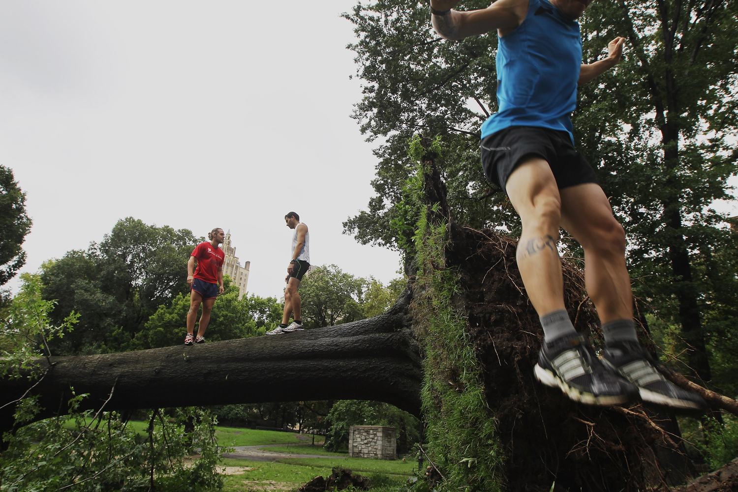 August 27, 2011, New York, NY. Miguel Aguado, left, and Claus Espinosa, center, stand on a downed tree as Raul Hernandez leaps off it, after Hurricane Irene dumped more than six inches of rain in New York City. The hurricane hit New York as a Category 1 storm before being downgraded to a tropical storm.