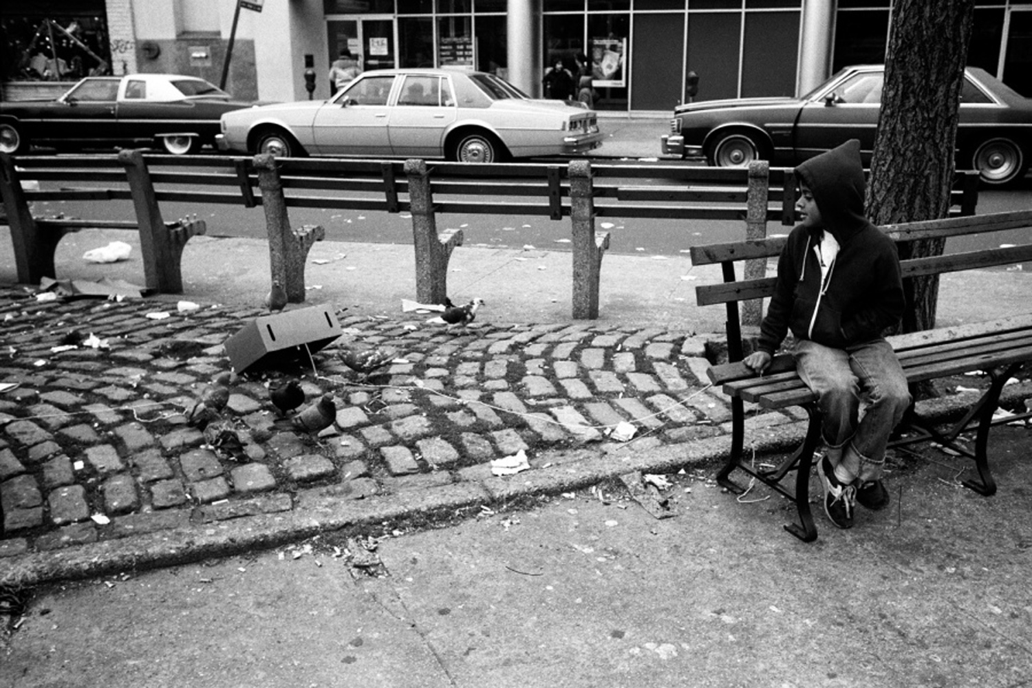 A boy tries to catch a pigeon, from Bronx Boys (FotoEvidence, 2011) by Stephen Shames.