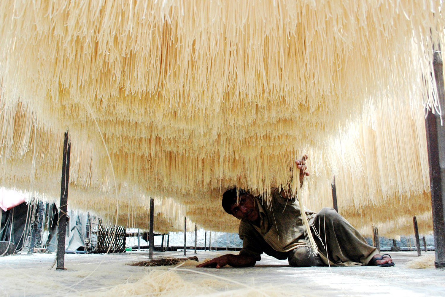 August 25, 2011. A man checks the quality of dried noodles at a local factory in eastern Pakistan's Lahore. Many Pakistani people buy noodles for an early morning meal before they start fasting during the Muslims fasting month of Ramadan.