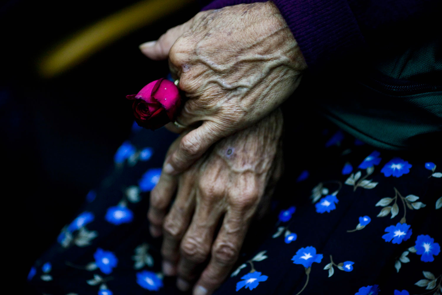 Aug. 2, 2011. Cristina Alfaro Mejia, whose husband and daughter were killed by soldiers during a massacre in the community of  Dos Erres in 1982, holds a rose while waiting to the sentence in Guatemala City. The court sentenced three former special forces soldiers to 6,060 years in prison each for the massacre of more than 200 men, women and children, one of hundreds that occurred during Guatemala's 36-year civil war, which ended in 1996. Some 240,000 people, mostly Mayan Indians, vanished or died.