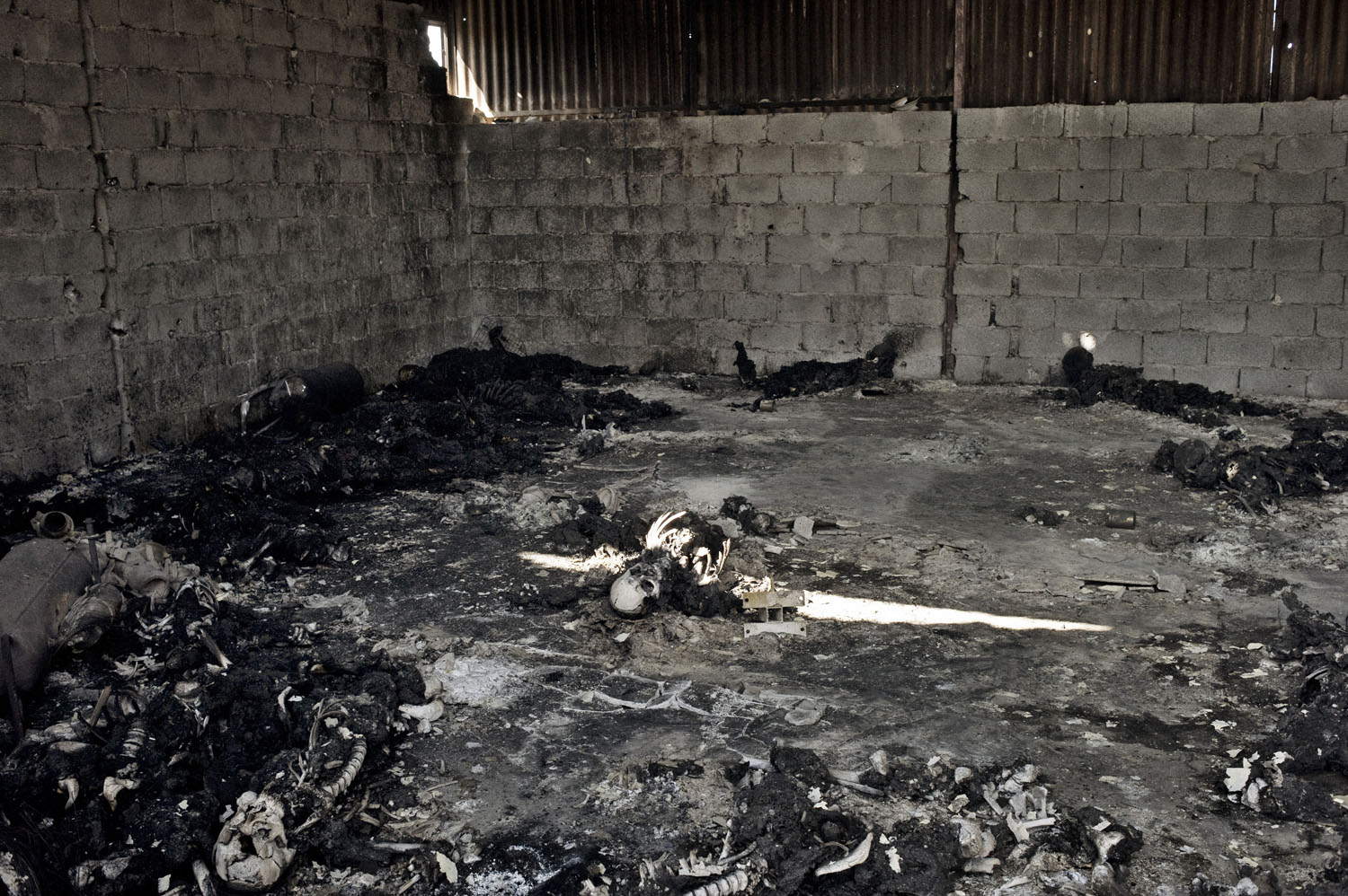 The charred remains of more than 50 people, victims of an alleged massacre by Gaddafi loyalists, lie in a warehouse on a military base in Tripoli, August 27, 2011.
