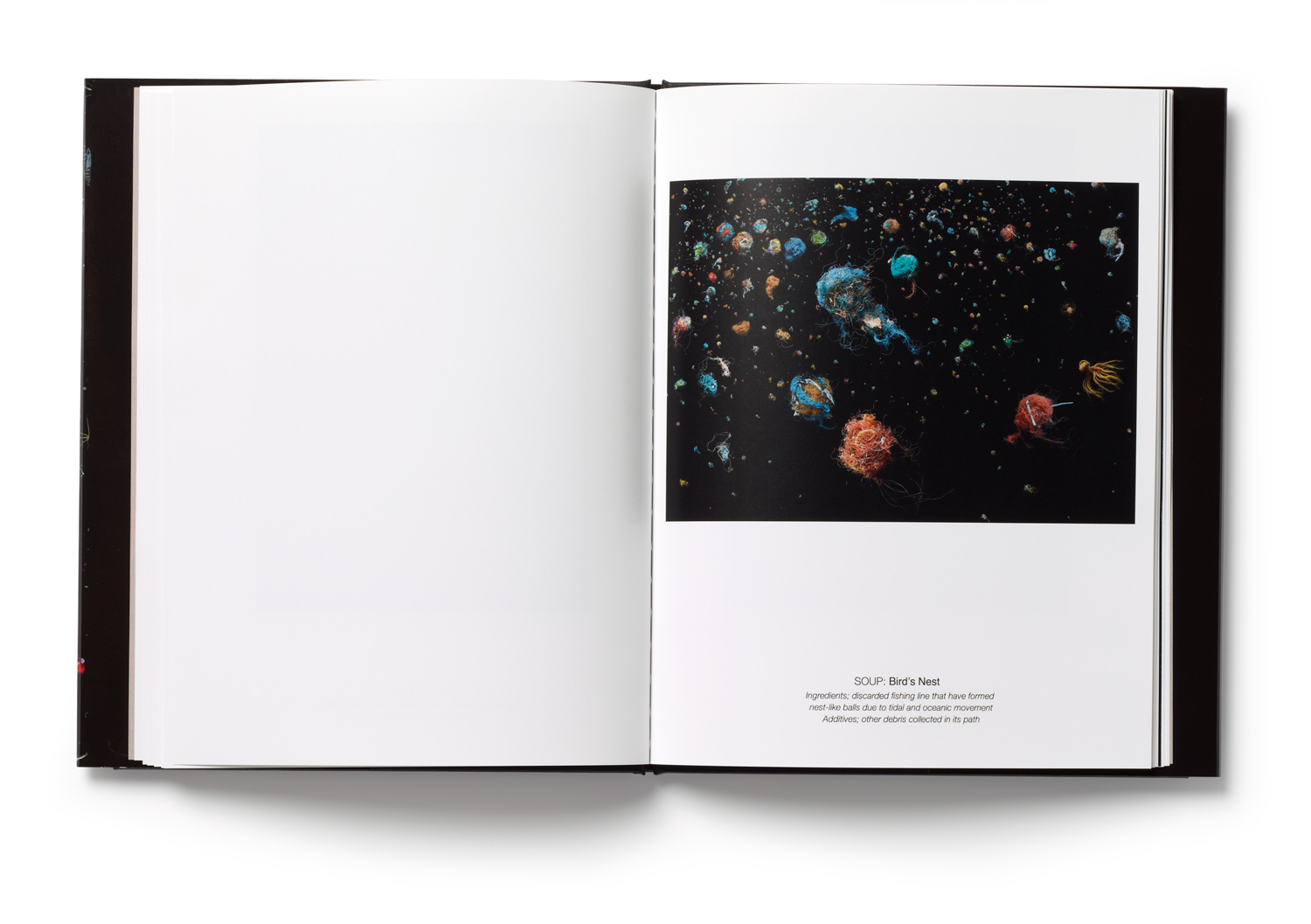 An inside spread of Mandy Barker's book SOUP. The artist say's,  The series of images aim to engage with, and stimulate an emotional response in the viewer by combining a contradiction between initial aesthetic attraction and social awareness.