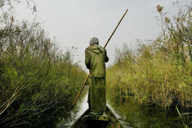 A Marsh Arab floats on his canoe through the Kurmashia marsh in southern Iraq.