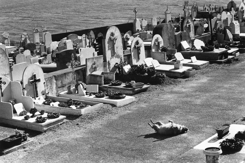 Saint-Tropez, France, 1979.