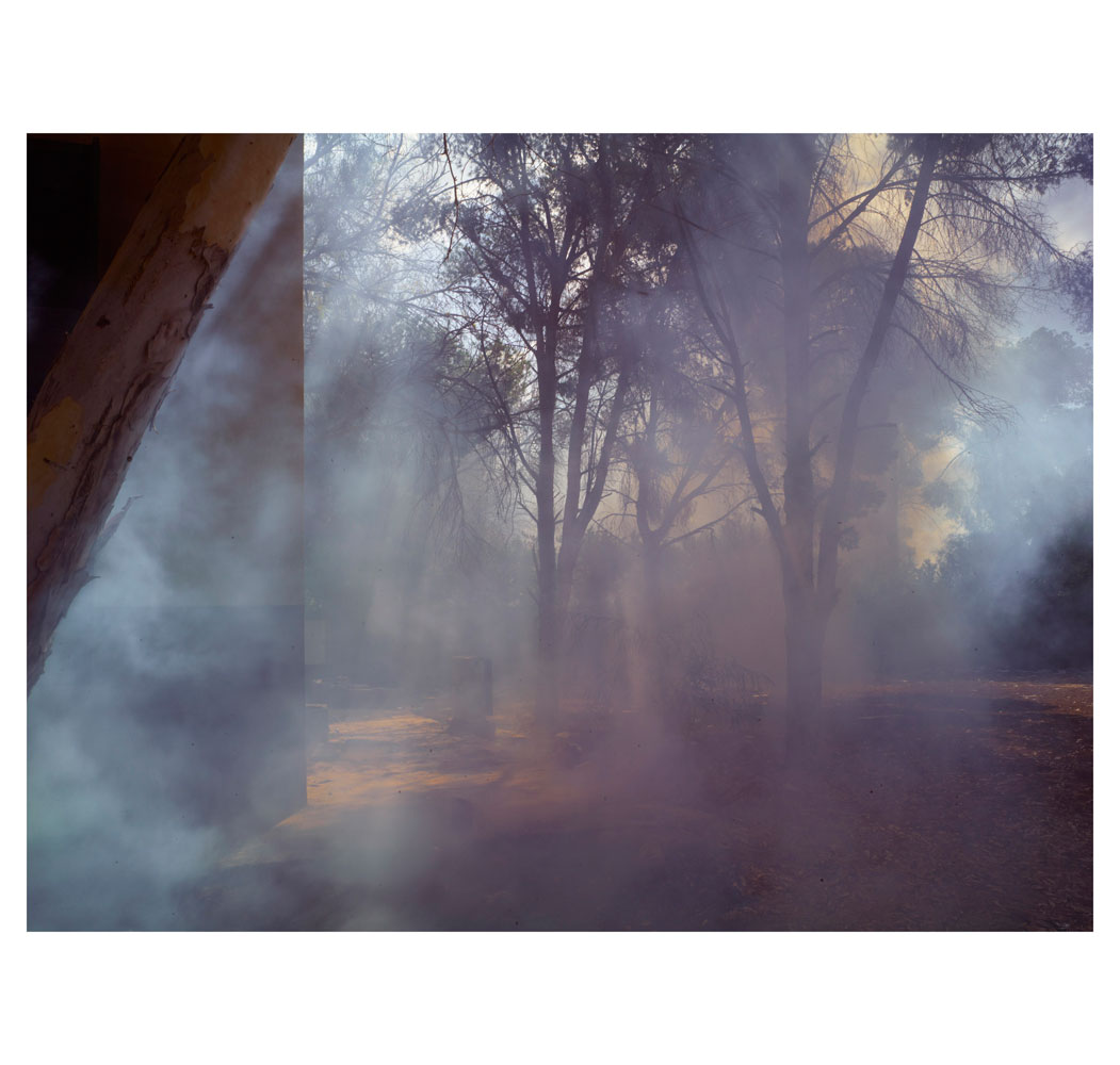 Smoke drifting through trees from a burning building of an abandoned compound.