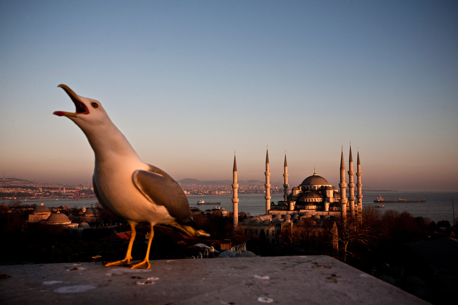 February 6, 2011. An exterior view of Sultanahmet (Blue) Mosque in Istanbul, Turkey.