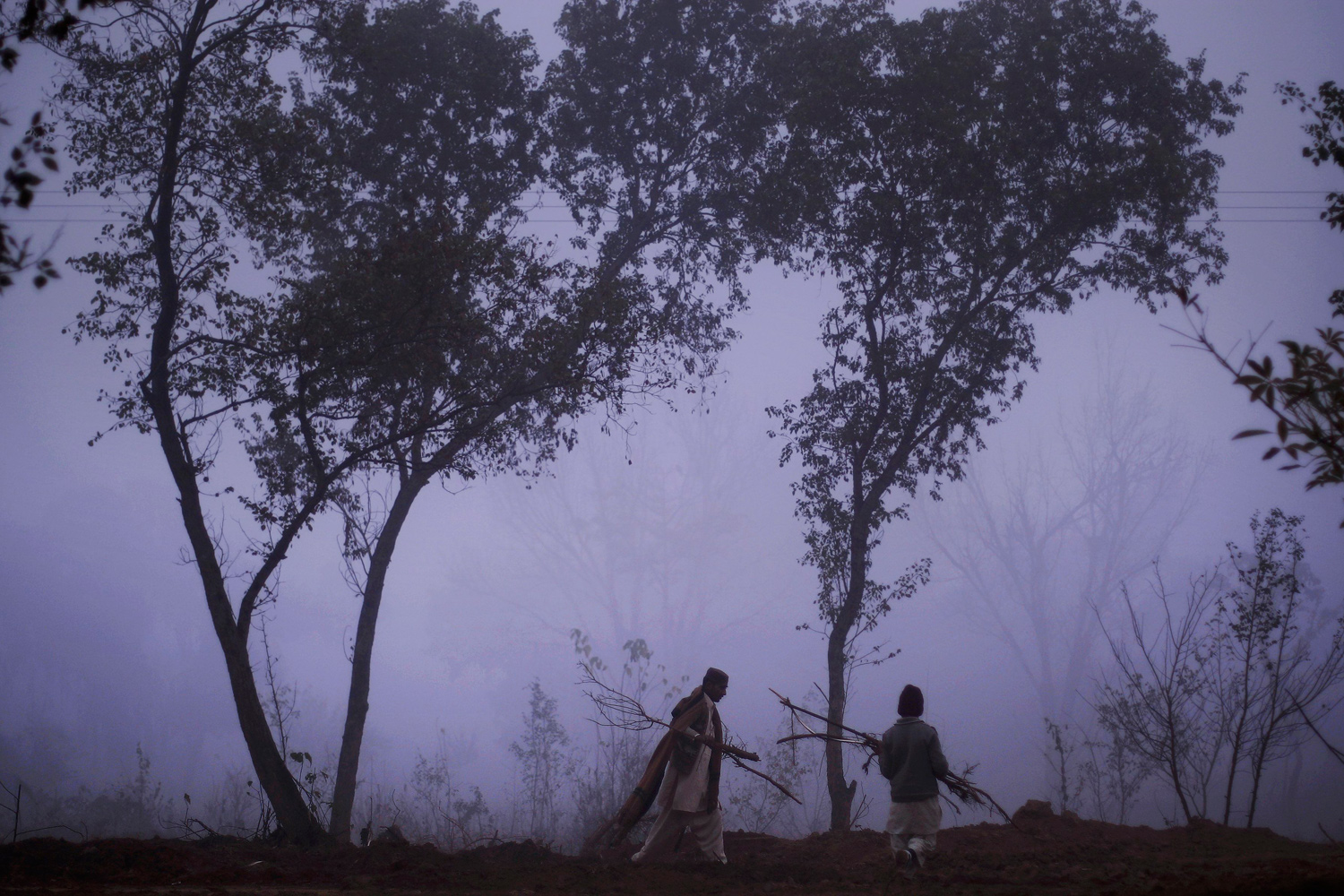 January 3, 2011. A Pakistani man and a boy collect wood to be used for heating on a cold and foggy morning in Islamabad, Pakistan.