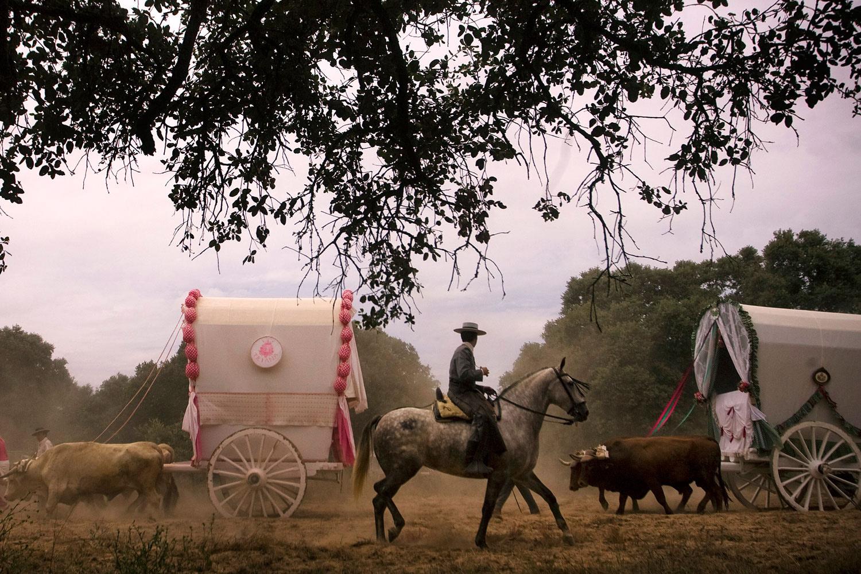 June 9, 2011. Pilgrims make their way to the shrine of El Rocio during the annual pilgrimage in Villamanrique, Spain.