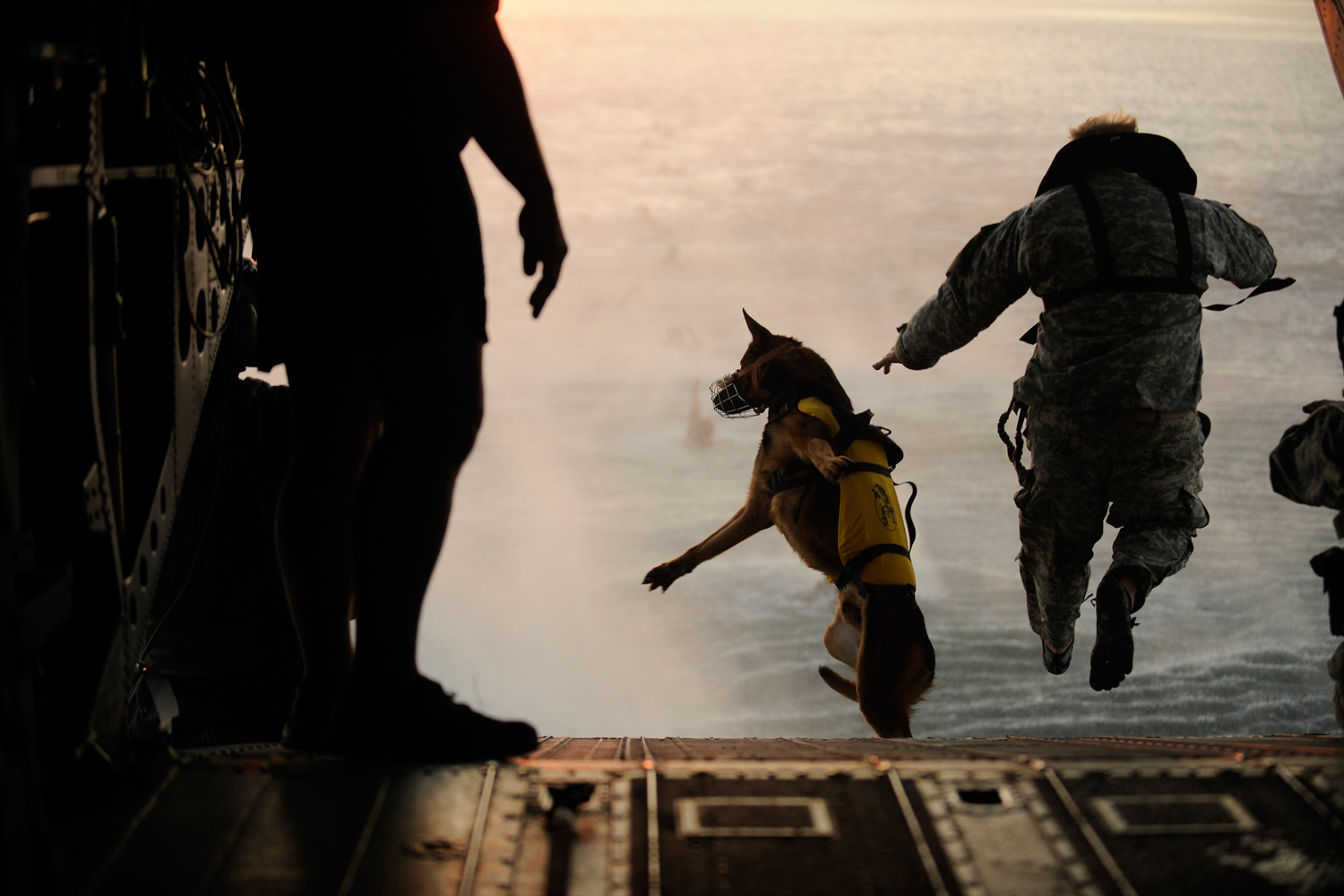 March 1, 2011. A U.S. Army soldier with the 10th Special Forces Group and his military working dog jump off the ramp of a CH-47 Chinook helicopter during water training over the Gulf of Mexico in this U.S. military handout image.