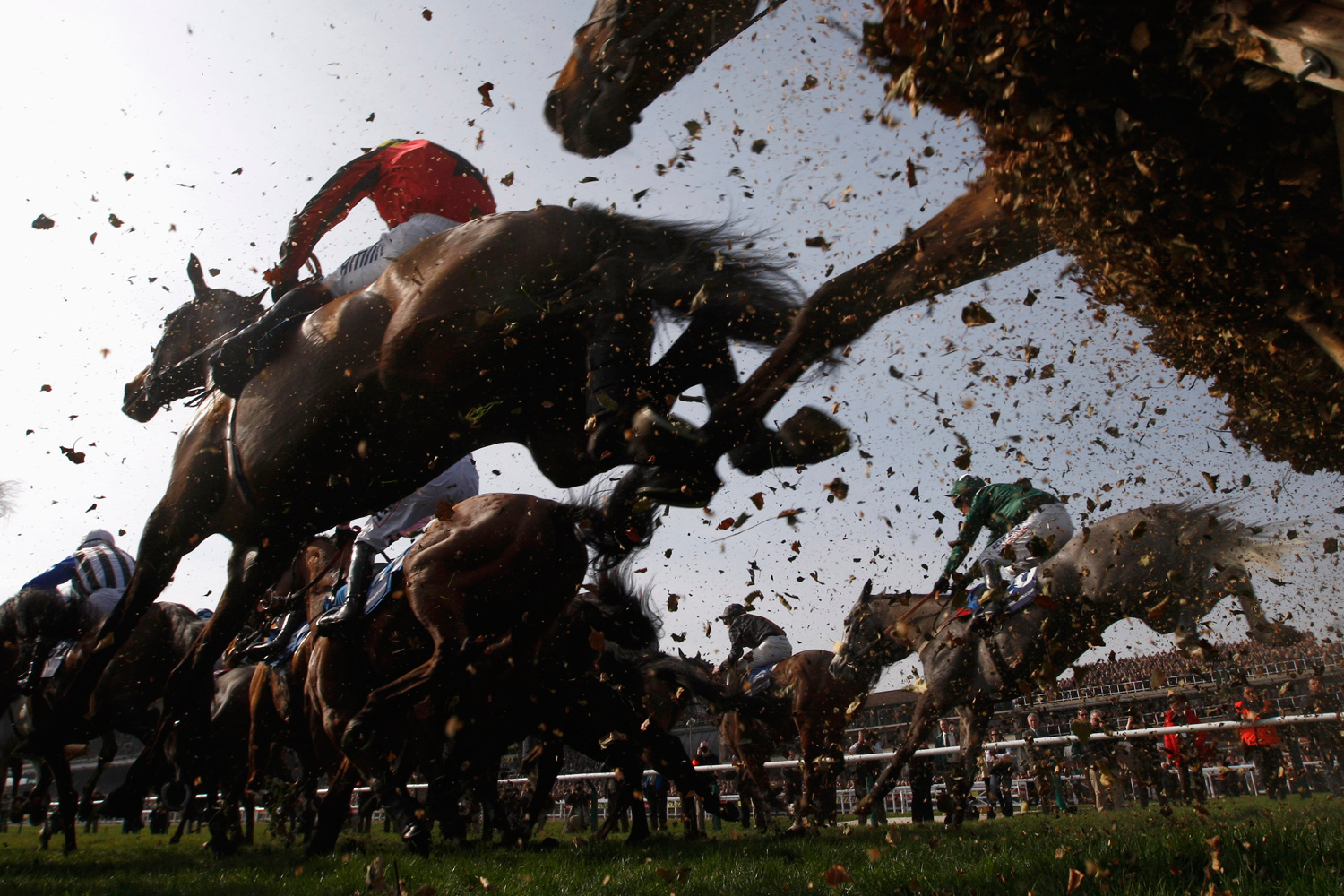 March 17, 2011. Horses jump a fence in The Pertemps Final during the Cheltenham Festival horse racing meet in Gloucestershire, western England.
