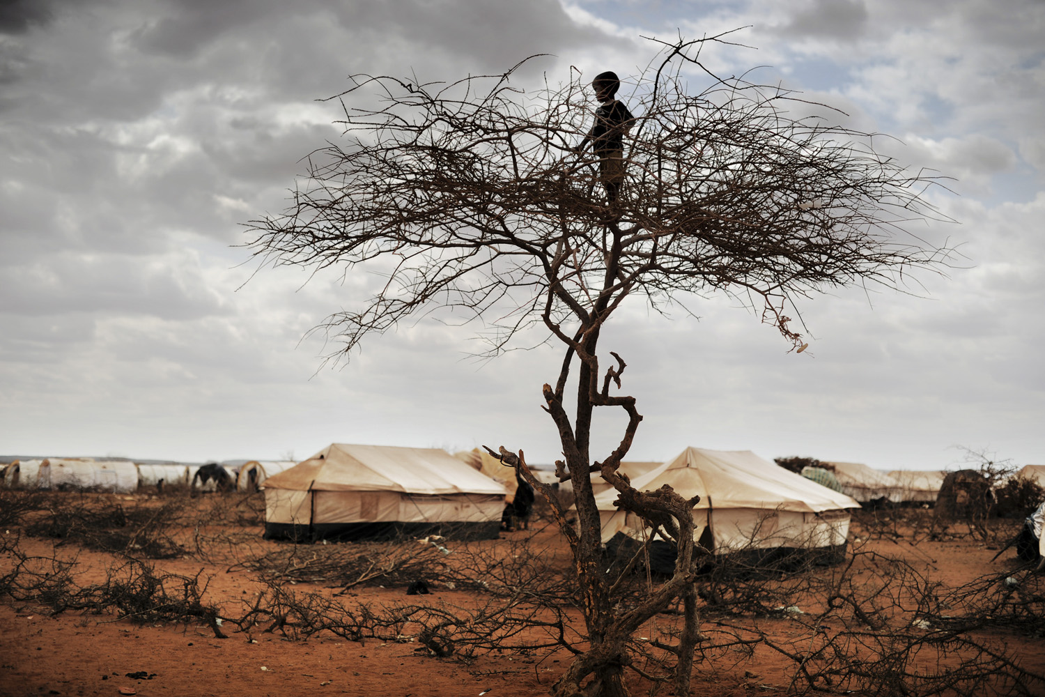 October 8, 2011. In the refugee camp  Hilaweyn,  also called  Hells wind,  a small boy overlooks the massive camp which is now grown to more than 40.000 refugees.
