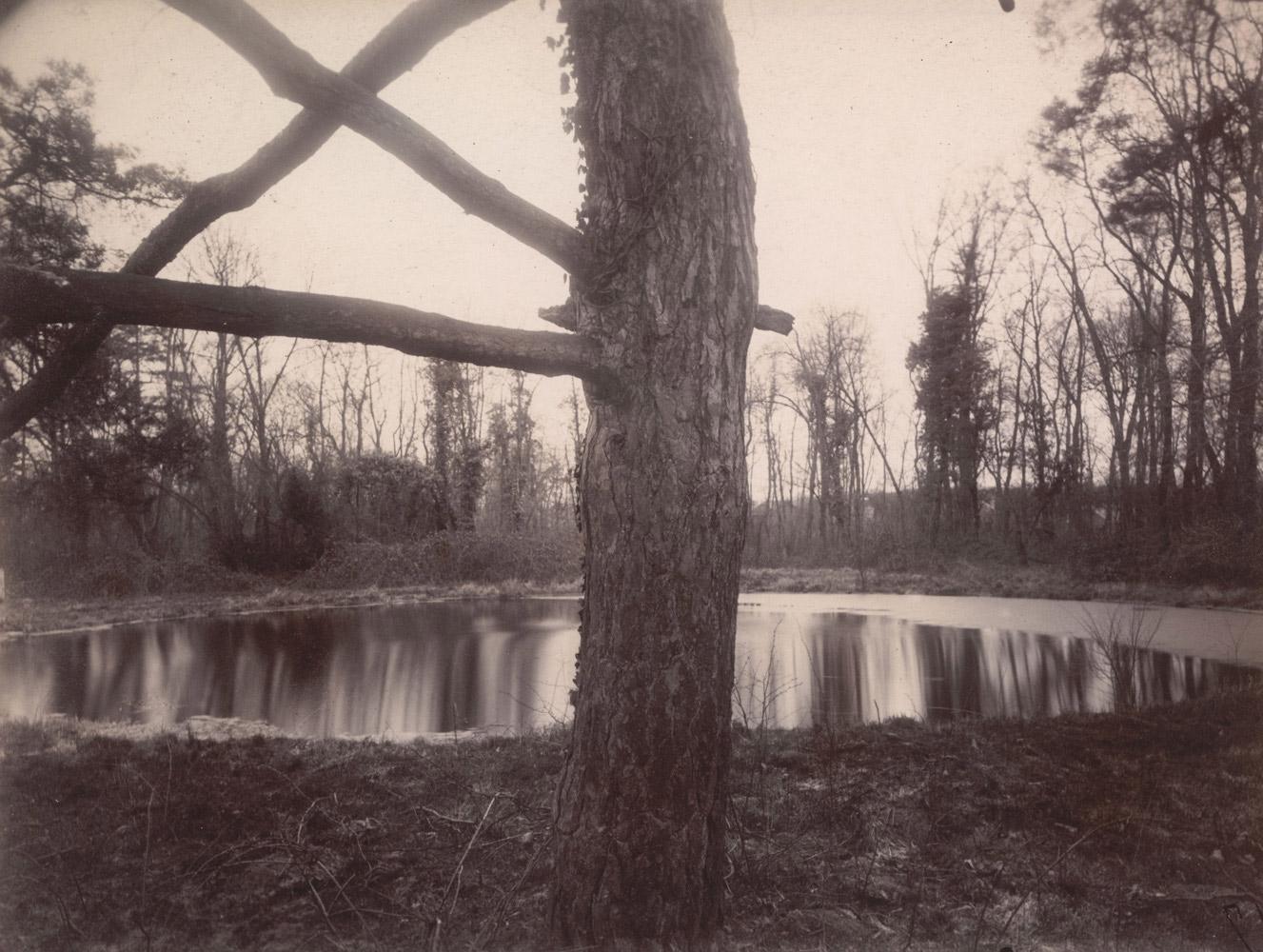 Parc de Sceaux, March, 7 a.m., 1925