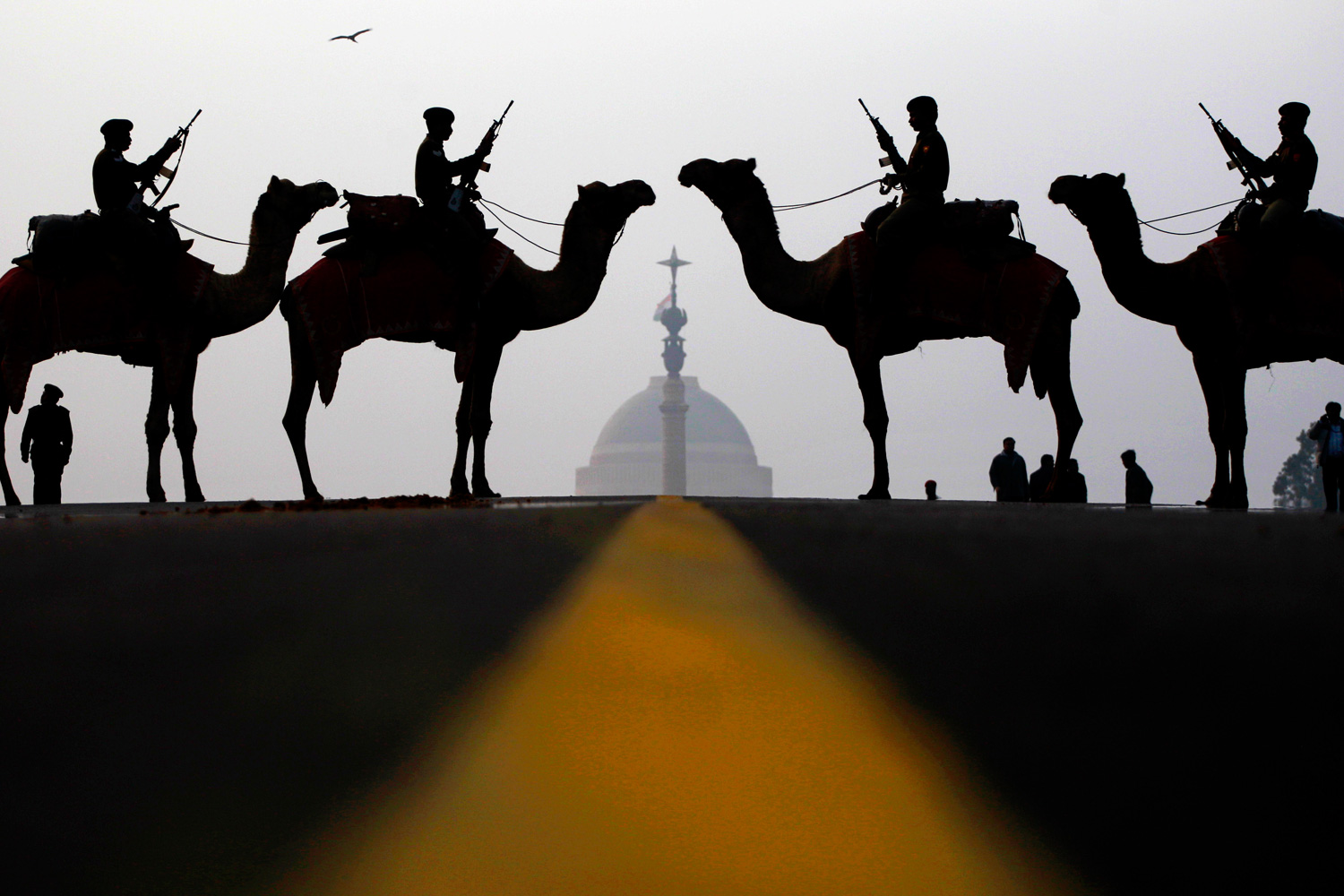 January 17, 2012. Indian soldiers from the Border Security Forces stand at attention atop camels in front of the Presidential Palace during a ceremony in preparation for the annual Beating Retreat in New Delhi, India.