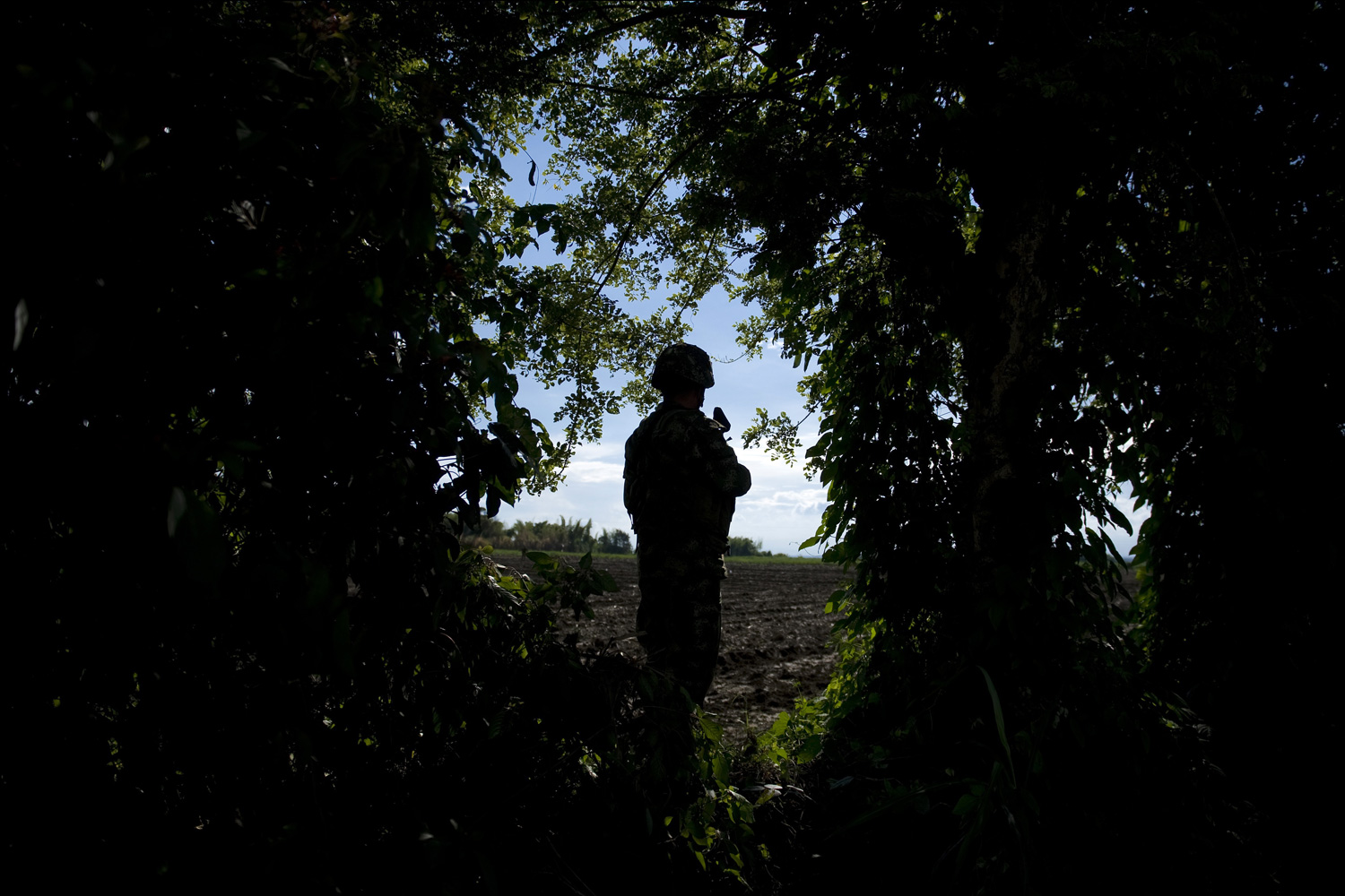 January 18, 2012. A Colombian soldier stands guard in the mountainous area of Miranda, Cauca department, Colombia.