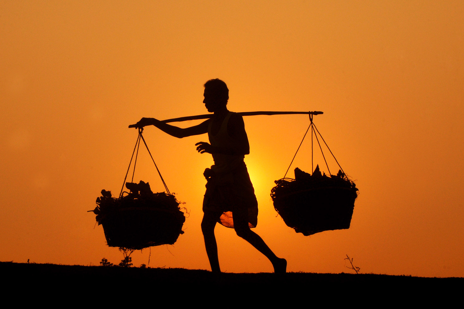 January 24, 2012. An Indian farmer returns back home from work during sunset in Agartala, India.