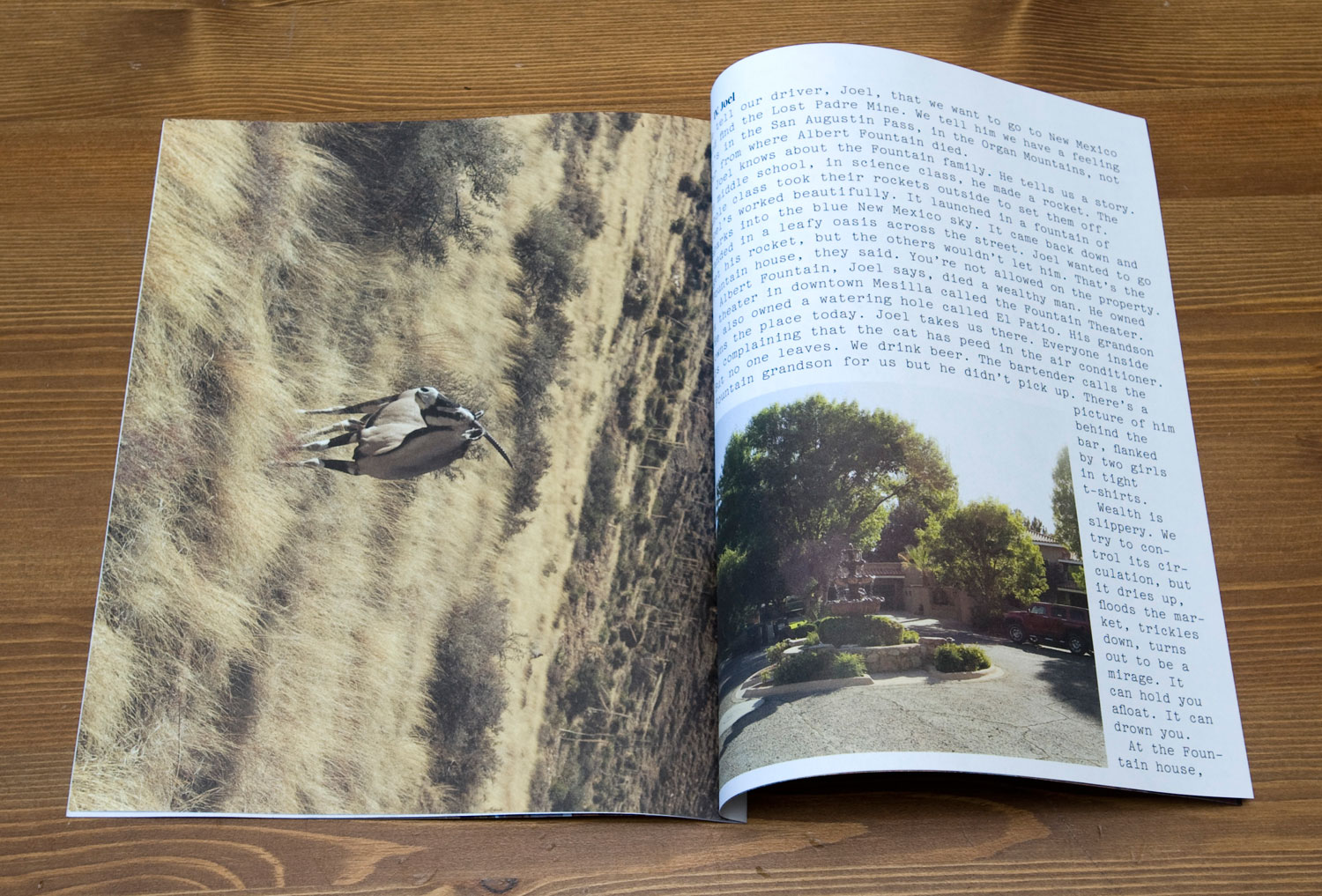 Postcards From America: spread from  We Don't Ask About the Oryx
