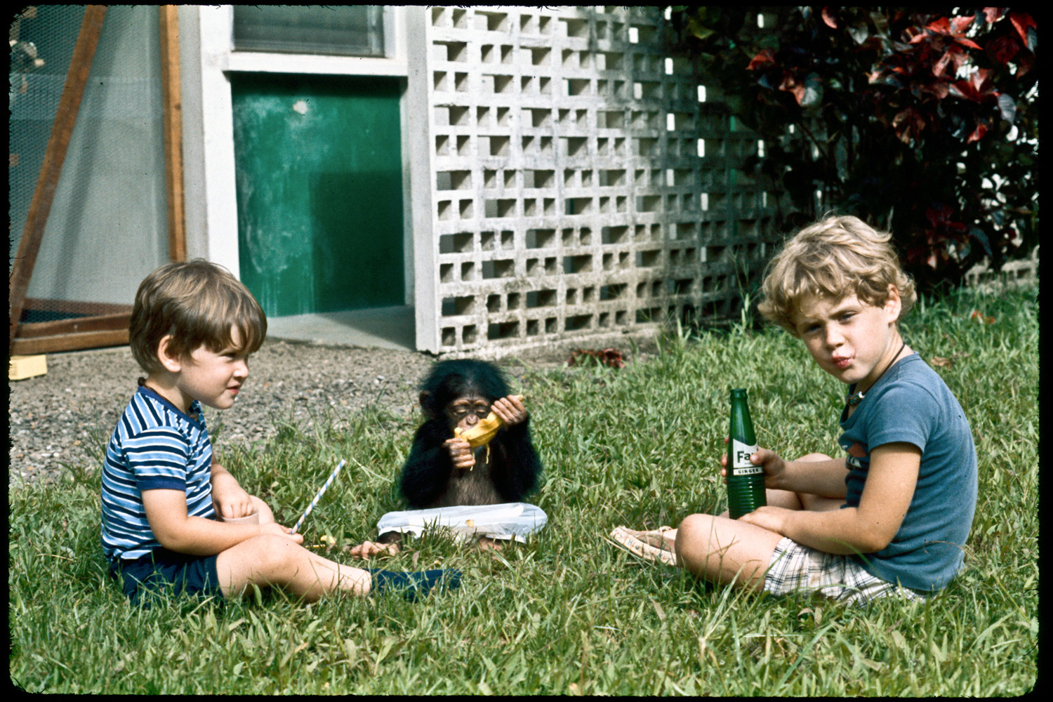 (L-R) Andrew, Evelyn and Jeff in the front yard enjoying snacks. Exchem Compound, 1977.