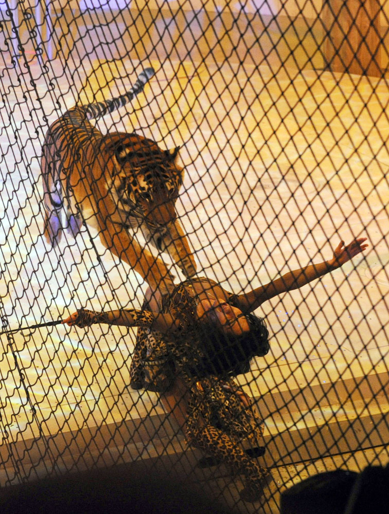 February 6, 2012. Russian Animal trainer Nataly Shirokaloff performs during the Capital Circus of Budapest gala.