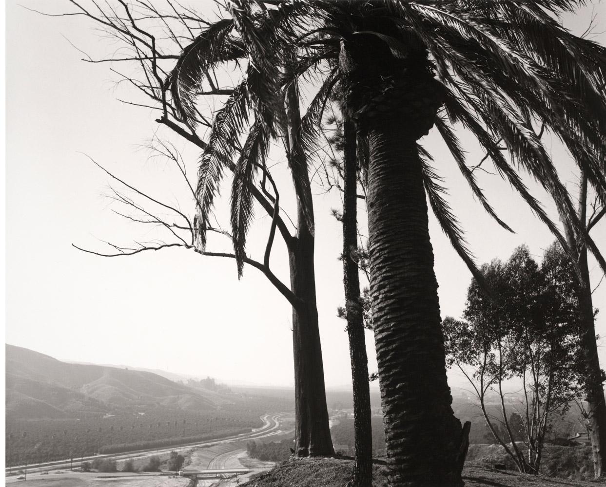 Edge of San Timoteo Canyon, looking towards Los Angeles, Redlands, California, 1978