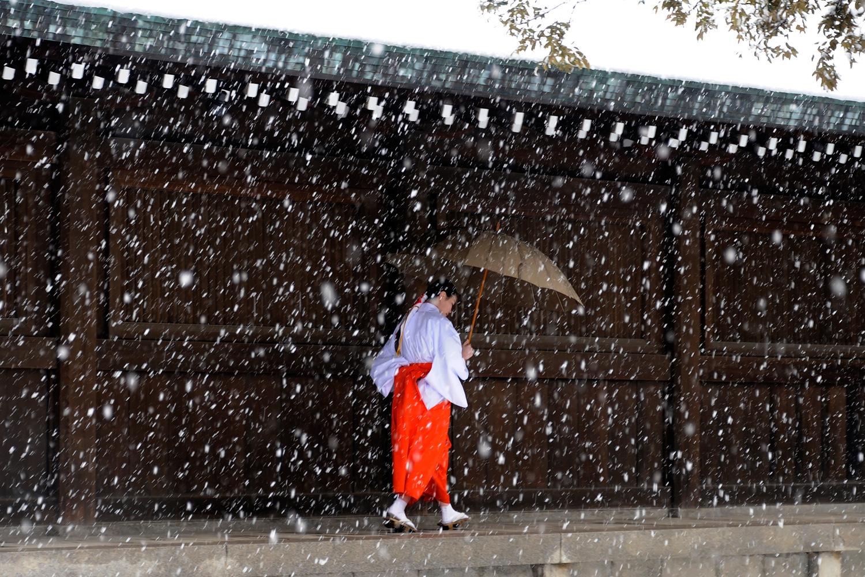 Feb. 29, 2012. A miko, or shrine maiden, walks as snow falls at Meiji Shrine in Tokyo.