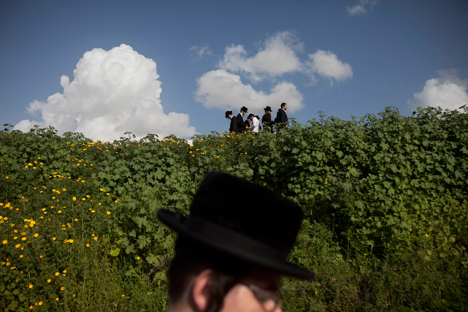 March 14, 2012. Ultra-Orthodox Jews attend the funeral of Rabbi Moshe Yehoshua Hager, leader of the hassidic sect Vizhnitz in Israel, in Bnei Brak, Israel. Rabbi Moshe Yehoshua Hager was 95.