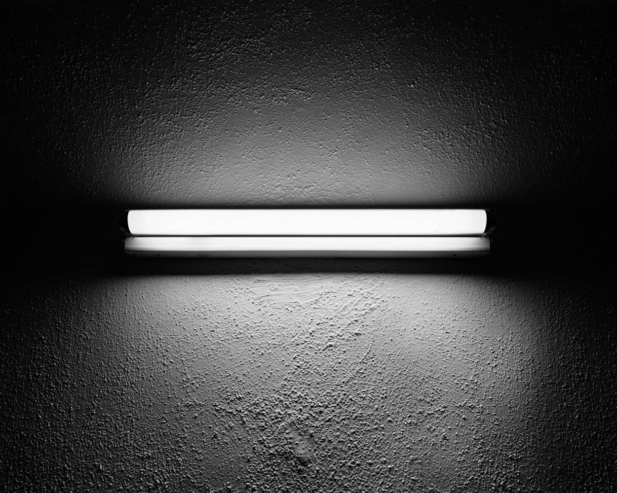 Fluorescent Lamp, 2010