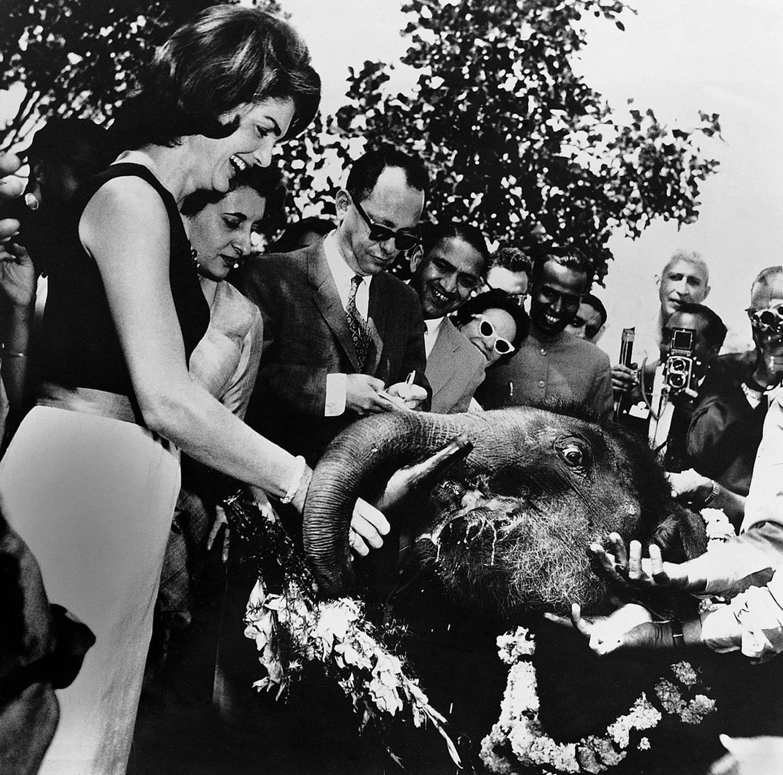 Jacqueline Kennedy feeding Urvashi the baby elephant at Teen Murti House, 1962