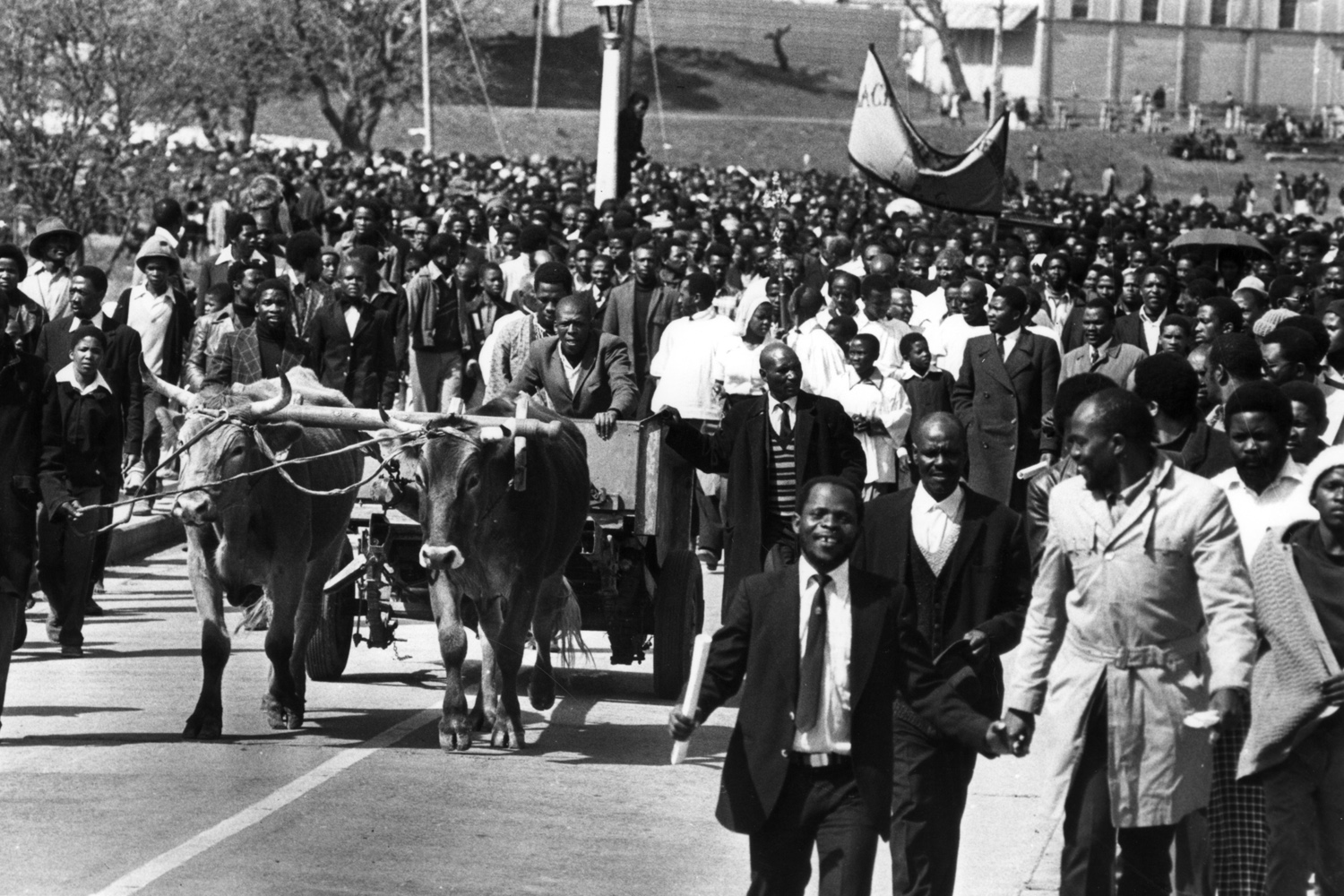The ox-cart on which Steve's body was taken to its final resting place is surrounded by mourners paying their last respects. 1977.