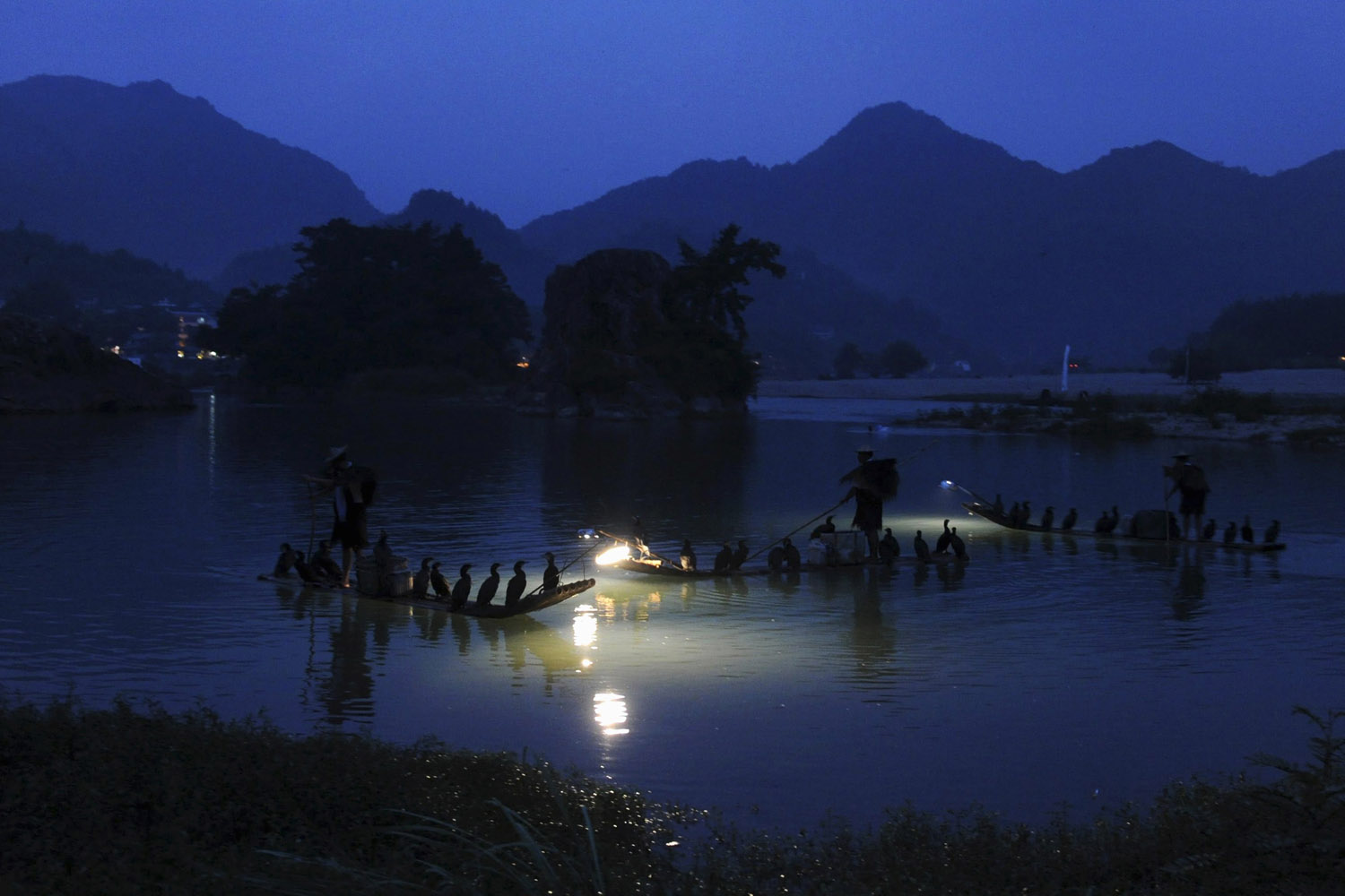 Aug. 11, 2012. Local men fish with trained cormorants perched on their boats in an ancient village in Yongjia County, Zhejiang Province, China.
