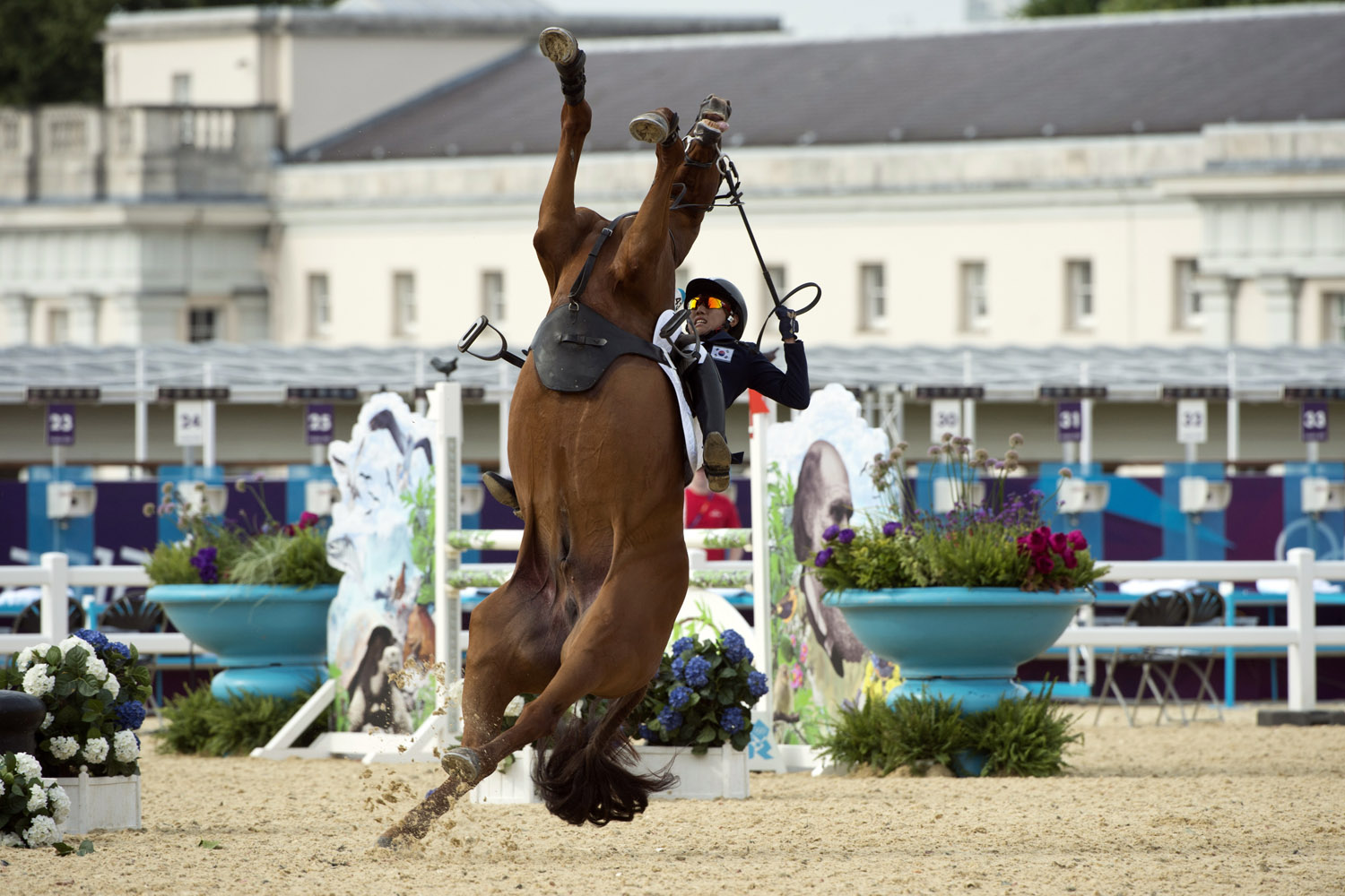 Aug. 11, 2012. South Korea's Hwang Woojin loses control of his horse Shearwater Oscar during the Show Jumping event of the Modern Pentathlon during the 2012 London Olympics.