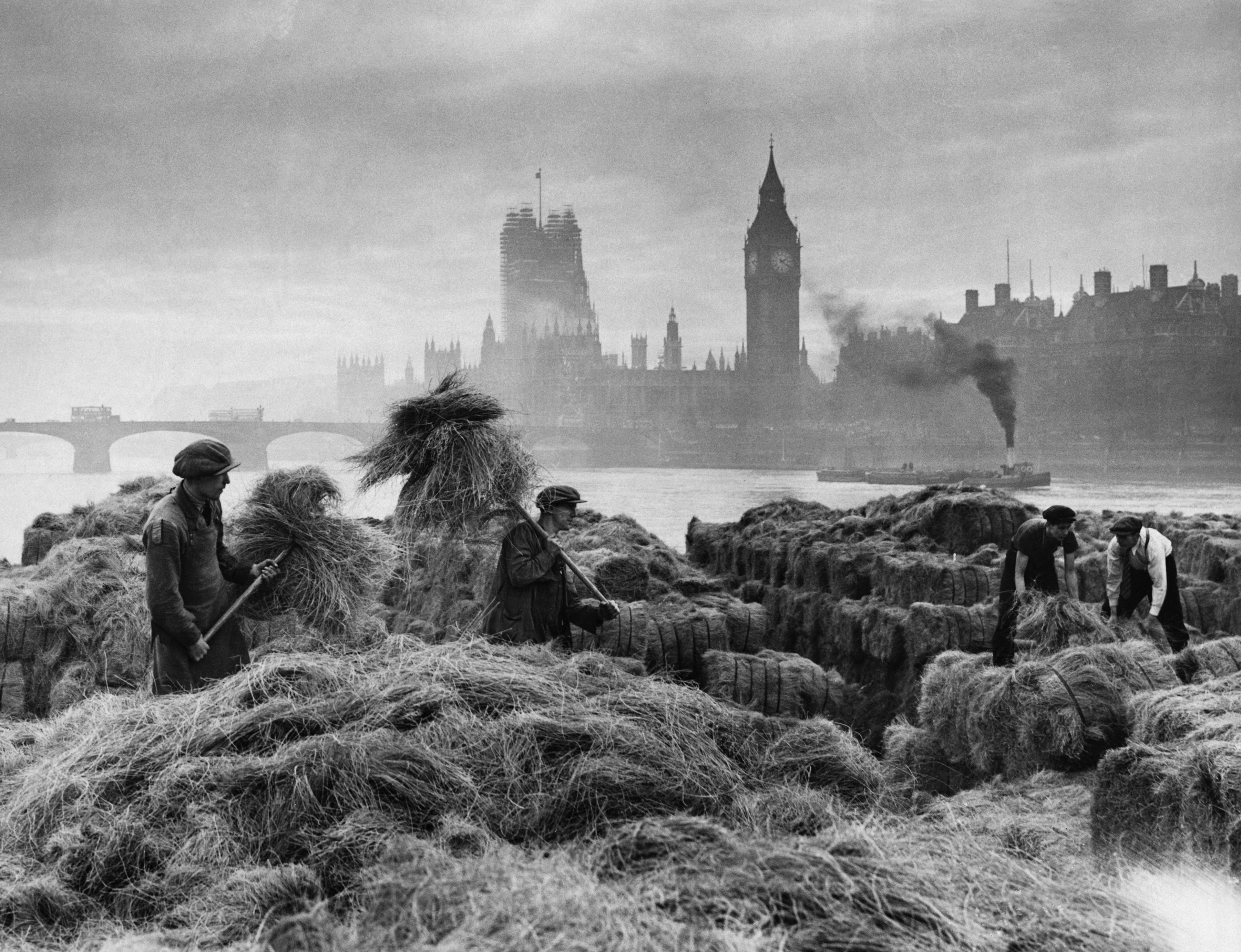 1938. Unloading hay at warehouses on the South Bank. London still had horses to feed. This seemingly rural scene is contrasted by a view of the Houses of Parliament in the background.