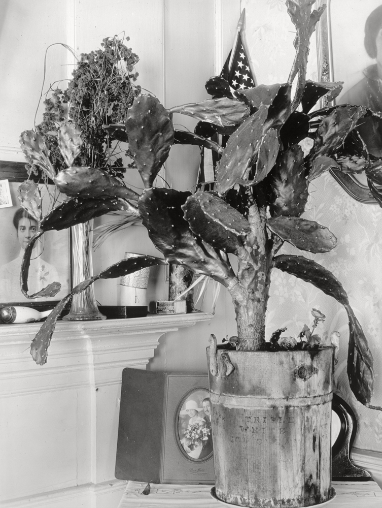 Interior Detail of Portuguese House, 1930