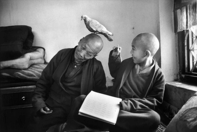 Shechen Monastery, Nepal. Tulku Khentrul Lodro Rabsel, 12, with his tutor Lhagyel, 1996.