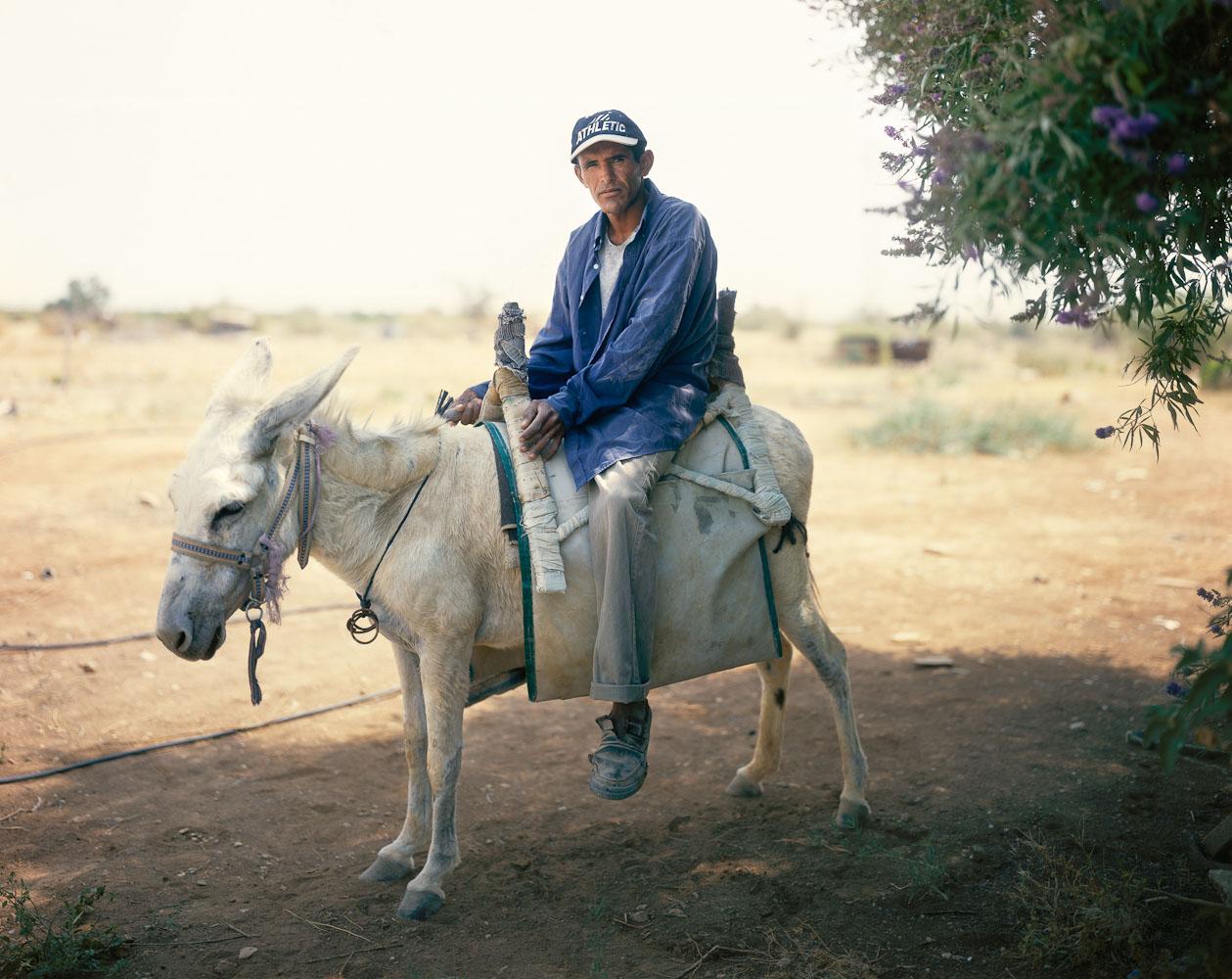 The Man On The White Donkey, HaBiqah, 2006