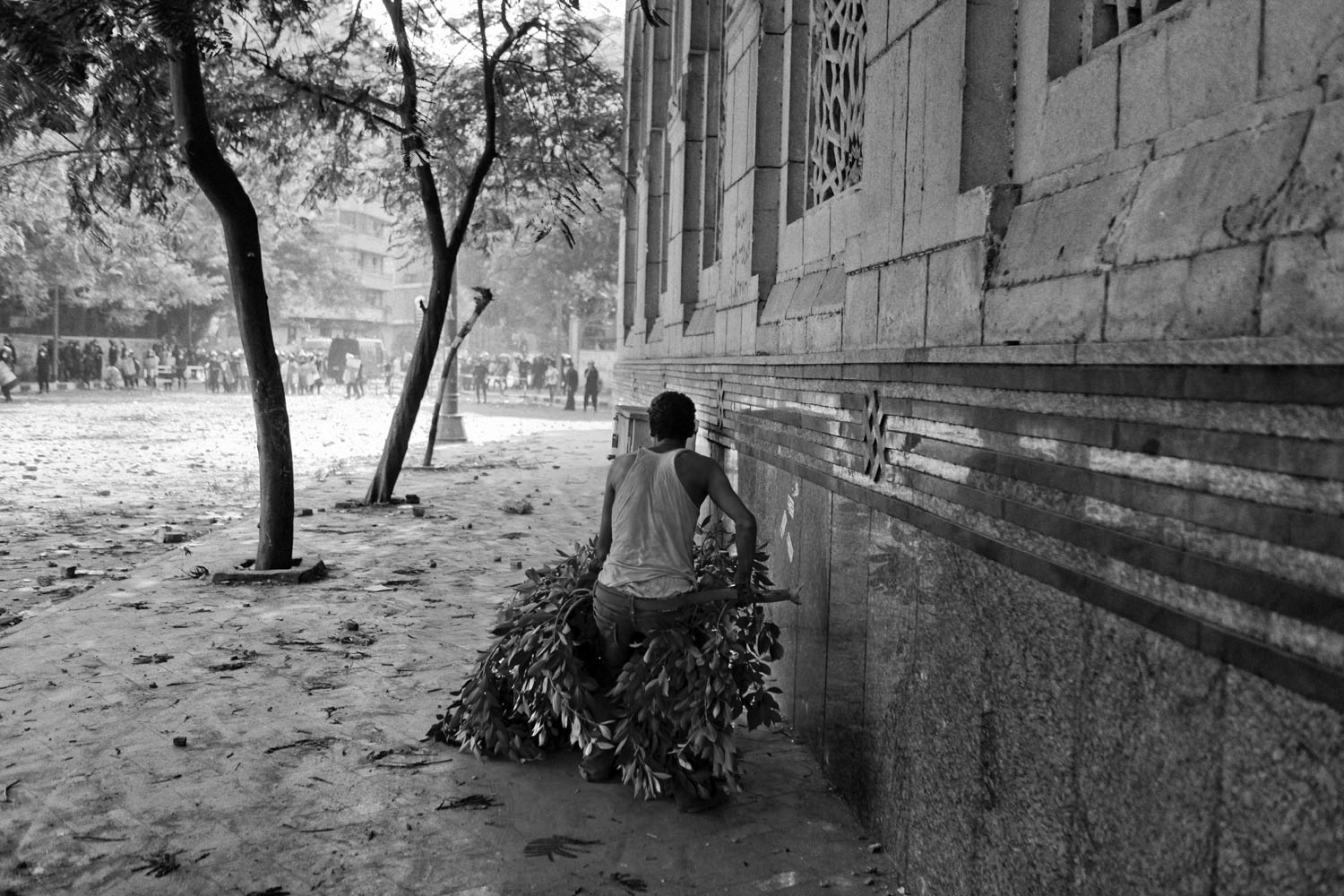 A protestor uses the branch of a tree as cover.
