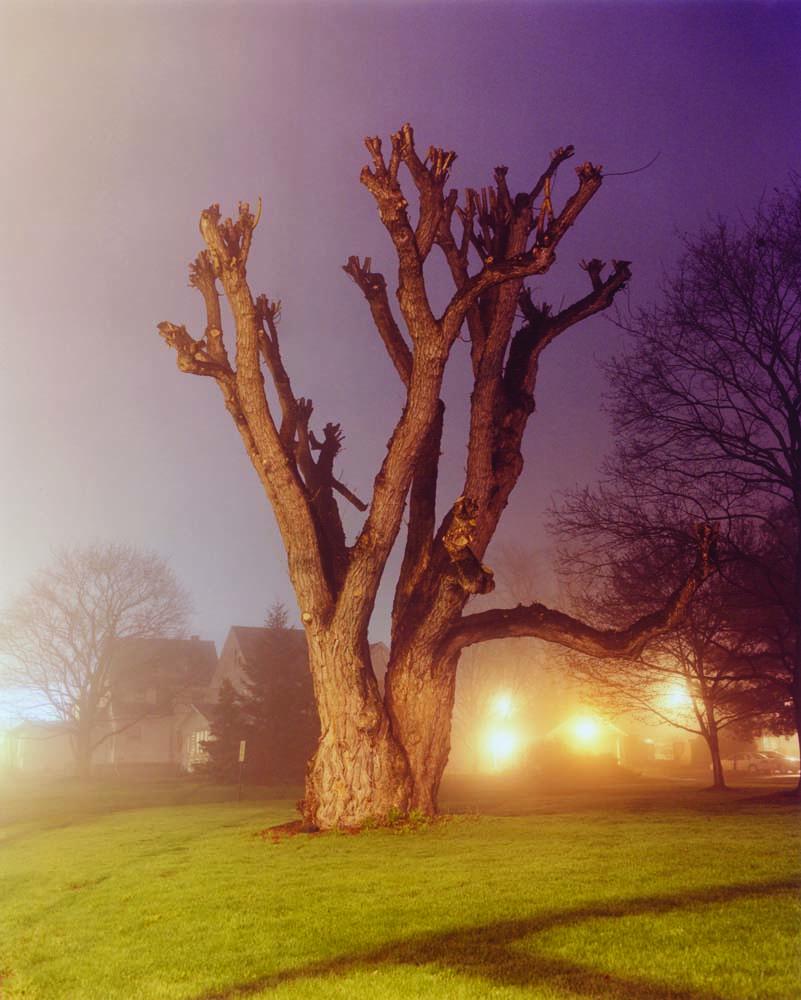 Transitions-Rochester: No Destiny by Gregory Halpern