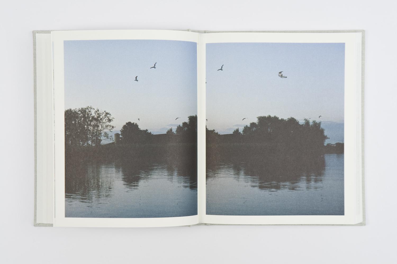 A Falling Horizon by Heidi de Gier