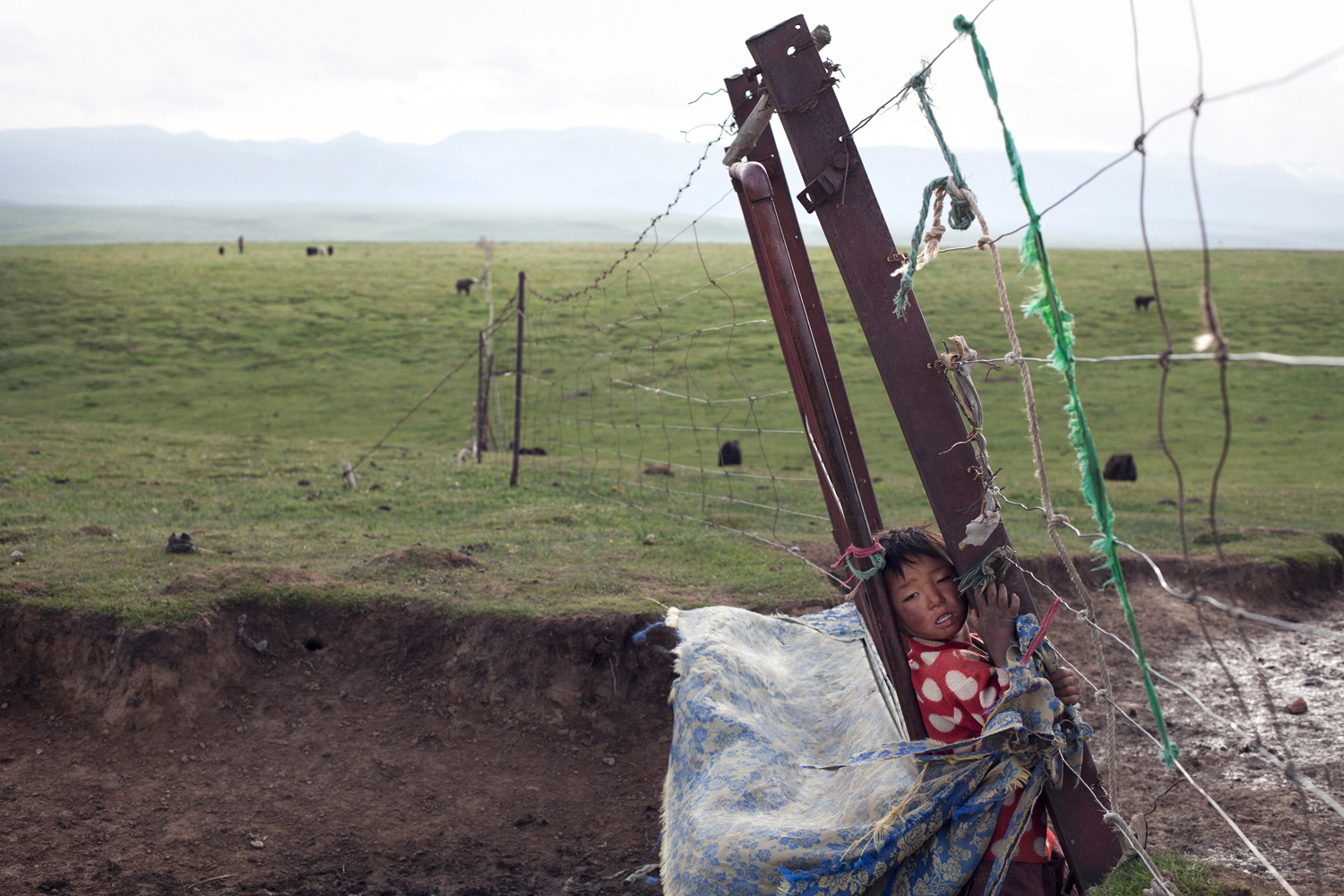 A Tibetan boy plays by his family's property fence, Duo Fu Dun, Qinghai.