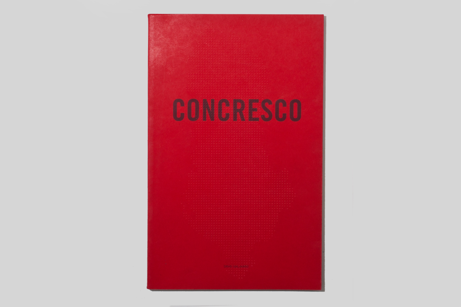 Concresco by David Galjaard, selected by Larissa Leclair, founder of the Indie Photobook Library