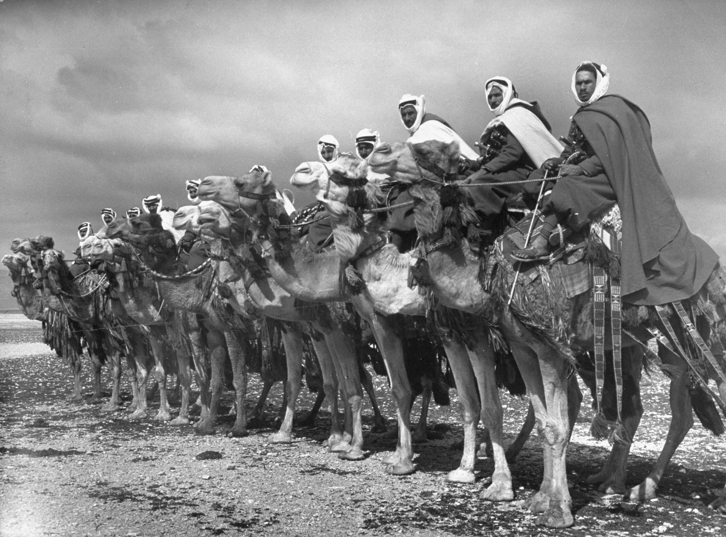"Members of the Bedouin ""camel cavalry"" near Damascus, Syria, 1940."