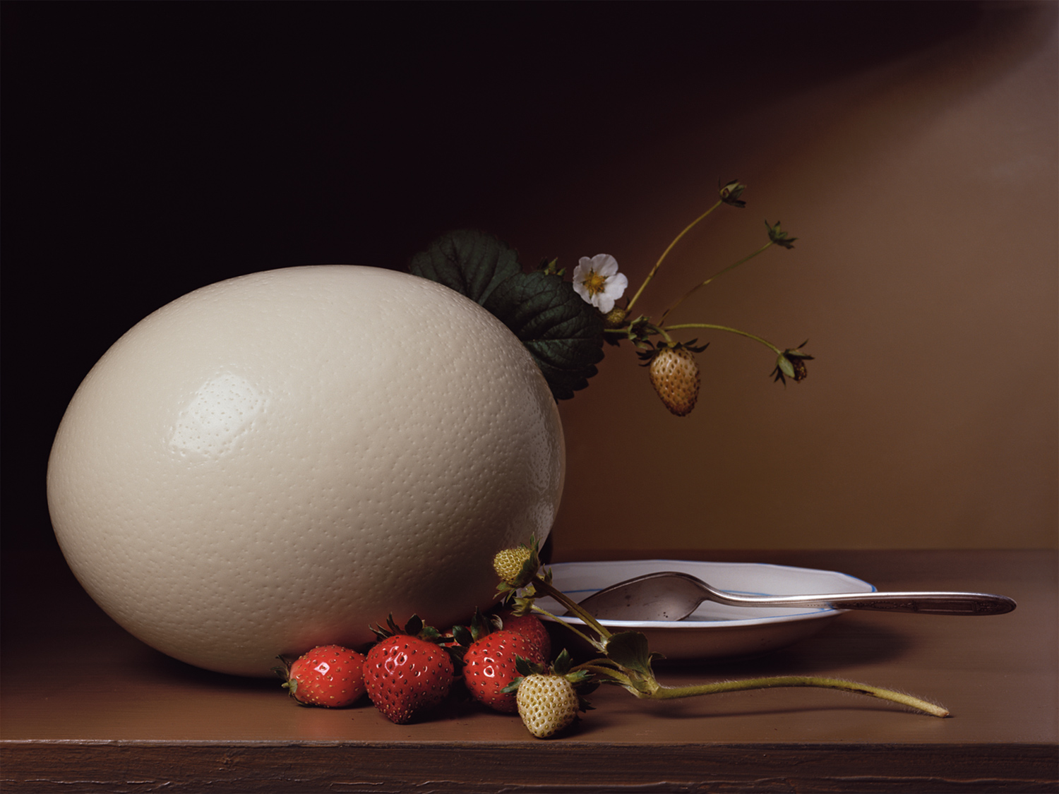 Plate 1 - Strawberries and Ostrich Egg
